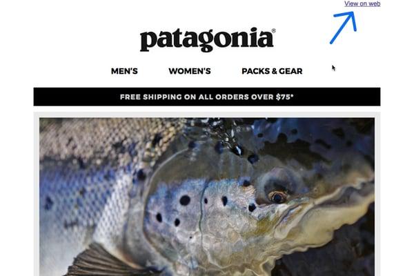 Patagonia Email